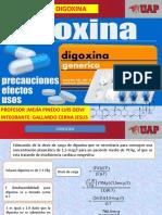 digoxina ejercicios.pptx