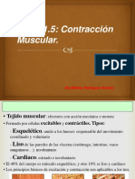 326299433-Contraccion-Muscular.ppt