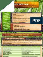 Presentación responsabilidad socialy deuda ecologica 5.pptx