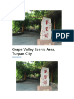 Grape Valley Scenic Area, Turpan City