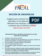 opciones_de_resultados_tiras_uro (1).pdf