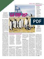 Qué Se Juega en La COP 25