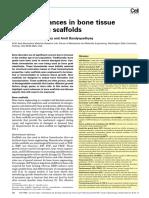 bose 2012scaffold.pdf