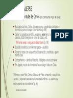 JUVENTUDE DE CARLOS.pdf