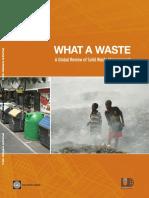 what a waste.pdf