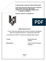 diplom_andreeva.pdf