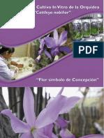 Manual técnica in vitro