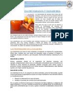 Mermelada de Naranja y Zanahoria