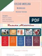 Micoplasma y Ureoplasma.pptx