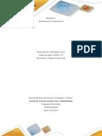 Recolección de Información-Formato