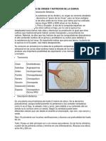 Informe de Origen y Nutricion de La Quinua