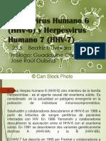 Herpesvirus Doc Selmy