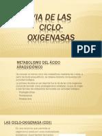 Eucosanoides