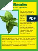 plantas rotulos