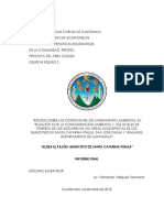 Informe Final Equipo 2 2015