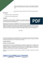 P SA 08 GESTION DE RIESGOS PRIORITARIOS NR0.doc