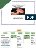 Resumen de Anatomia prostodontica