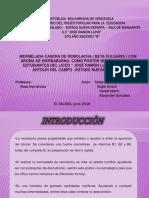 PROYECTO FINAL REMOLACHA LAMINA.pptx