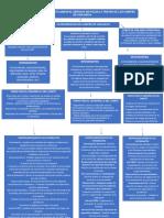 MAPA CONCEPTUAL lineamientos.docx