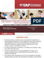 Introduccion de La Terapia Familiar y Teorias Final