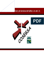 Presentacion COSEGSA 2019