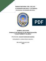 CALENTAMIENTO GLOBAL (1).docx