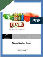 PLAN MARKETING GRUPO MAHOU SAN MIGUEL.pdf