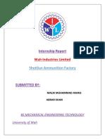 Internship Report 1
