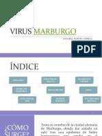 Virus Marburgo Animacion