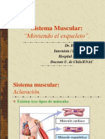 Clase IV Muscular