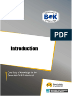 2-Introduction to safety SIA.pdf