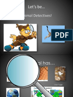 Animal Detectives Animal Classification