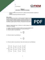 Algoritmo de Lagrange