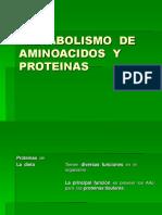 6571420 Metabolismo de Aminoacidos y Proteinas