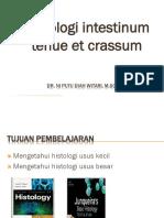 ( KULIAH 5 ) Kuliah 5. Histologi Intestinum Tenue Et Crassum. 2019 PDF