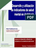 Indicadores Salud Mental