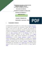 Practica 5 phyrrophytas.doc