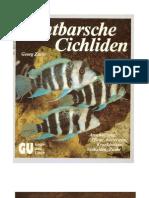 Zurlo, Georg - Buntbarsche Cichliden