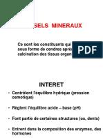 Les Sels Mineraux