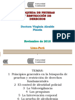 BÚSQUEDA DE PRUEBA Y RESTRICCIONES