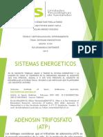 teoria y metodologia del entrenamiento