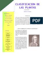 ENSAYO DE LA CLASIFICACIÓN VEGETAL