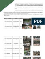 Inf. Diputada Áreas Verdes Feb-2018BCH