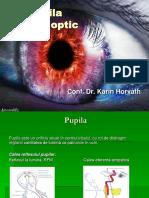 Pupila, n. optic.ppt