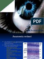 Retina.ppt