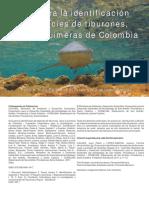 Guia_identificacion_tiburones_Colombia.pdf