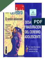 Desarrollo-y-maduracion-Cerebro-Adolescente.pdf