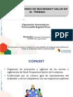 COPASST 2015