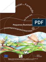 Peq_Ruminantes