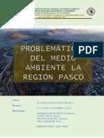 problematica del medio ambiente la region pasco
